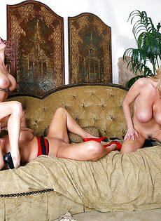 Три сногсшибательные зрелые сучки трахнулись с одним мужичком - фото #6