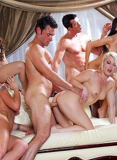 Голливудское секс шоу с начинающими порнозвездами - фото #12
