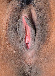Горячая анальная дырка темнокожей девушки соскучилась по проникновению - фото #7
