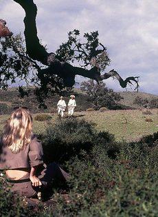 Блондинку с обвисшими сиськами удовлетворяют под открытым небом - фото #6