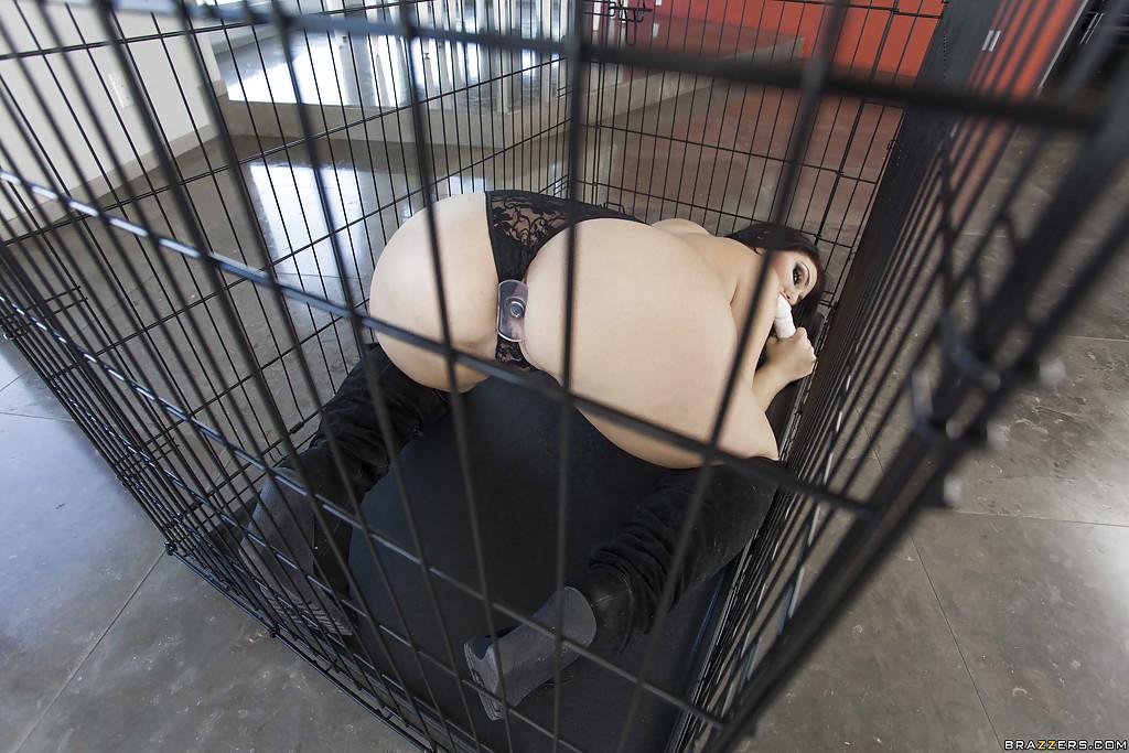 В клетке сидит брюнетистая стерва с большой задницей
